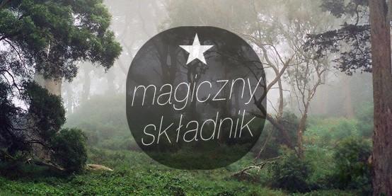 5 sposobów na Magiczny Składnik